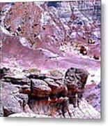 Petrified Wood In The Painted Desert Metal Print