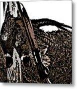 Pheasant Hunt Metal Print