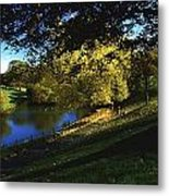 Phoenix Park, Dublin, Co Dublin, Ireland Metal Print by The Irish Image Collection