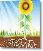 Photosynthesis, Artwork Metal Print