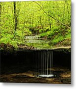 Pickle Spring In Missouri Metal Print