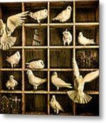 Pigeon Holed Metal Print