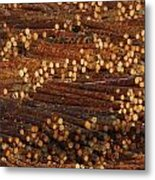 Pile Of Logs, Peeled And Ready Metal Print