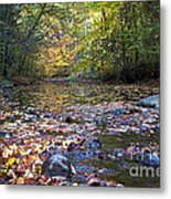 Pine River In Fall Metal Print