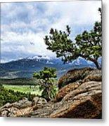 Pine Tree And Mountains Metal Print