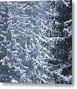 Pine Trees Covered In Snow, Les Arcs Metal Print