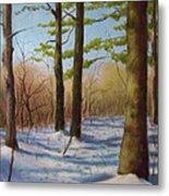 Pines In Winter Metal Print