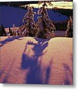 Pink And Purple Sunrise Shadows Of Snow Metal Print by Natural Selection Craig Tuttle