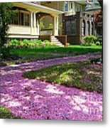 Pink Carpet Metal Print