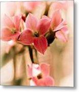 Pink Floral 1 Metal Print