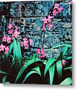 Pink Flowers Gray Wall Metal Print