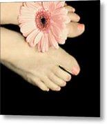 Pink Gerbera Daisy Metal Print by Diana Lee Angstadt