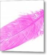 Pink Goose Metal Print