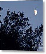 Pink Half Moon Photograph Metal Print