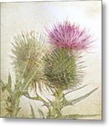 Pink On Green Metal Print
