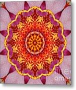 Pink Orchid Mandala-1 Metal Print