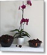Pink Phalaenopsis Orchid And Sour Cherries Metal Print