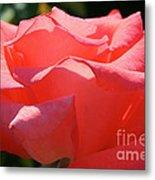 Pink Touch Of Class Petals Metal Print