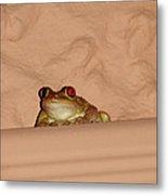 Pinky Toad Metal Print