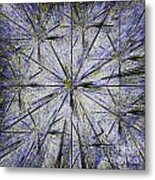 Pins And Needles Metal Print