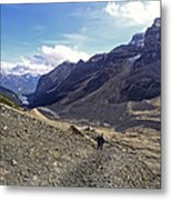 Plain Of Six Glaciers Trail - Lake Louise Canada Metal Print