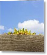 Plant For Fence Metal Print
