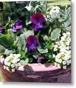 Planter Of Purple Pansies And White Alyssum Metal Print