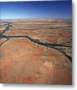 Plants Grow Along Desert River Drainage Metal Print