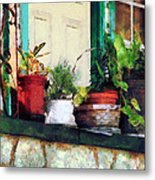 Plants On Porch Metal Print