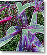Plasticized Cape Lily Digital Art Metal Print