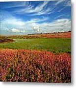 Plateau Of Flower Metal Print
