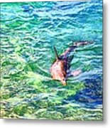 Playful Dolphin Metal Print by Jose Lopez