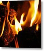 Playing With Fire II Metal Print