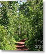 Pleasant Trail Metal Print