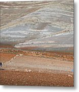 Ploughing In The Atlas Mountains Metal Print