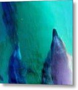Pod Of Dolphins Metal Print