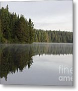 Pog Lake Tree Line Metal Print by Chris Hill
