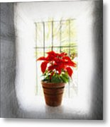 Poinsettia In Window Light Metal Print