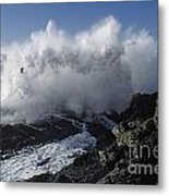 Point-lobos-9-5 Metal Print by Craig Lovell