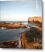 Point Lobos Number Three Metal Print by Catherine Lau