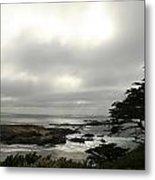 Point Lobos View Metal Print