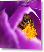 Pollination Party Of One Metal Print
