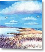 Pond At South Cape Beach Metal Print