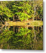 Pond Reflection Guatemala Metal Print