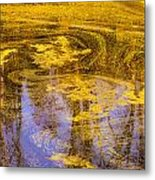 Pond Scum Two Metal Print