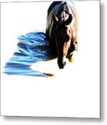 Pony Fun Metal Print