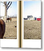Pony Pose - Gently Cross Your Eyes And Focus On The Middle Image Metal Print