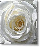 Pope John II Rose Metal Print