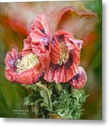 Poppies Big And Bold Metal Print
