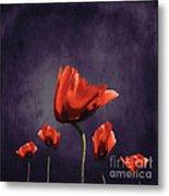 Poppies Fun 02b Metal Print